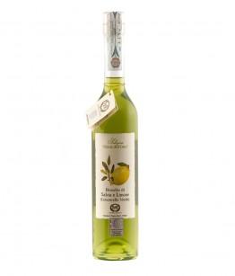 Rosolio di Salvia & Limone